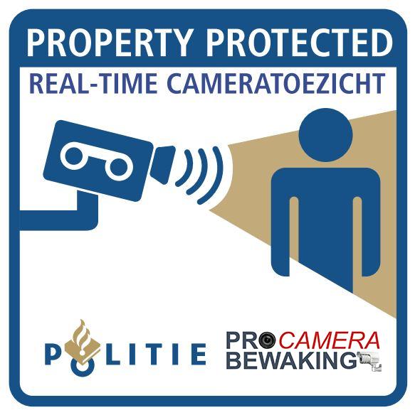 Live-view---Pro-camera
